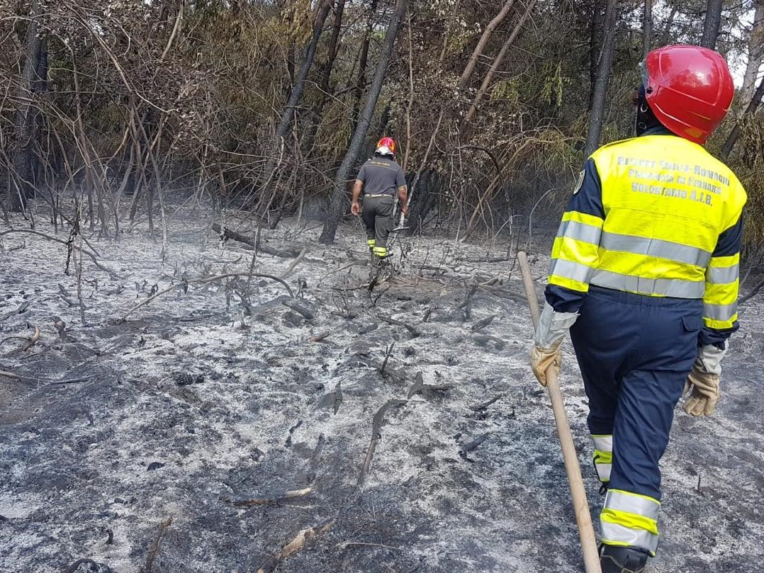 ANTINCENDIO BOSCHIVO - AIB